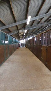 Luxury accommodation for the horses and ponies :)