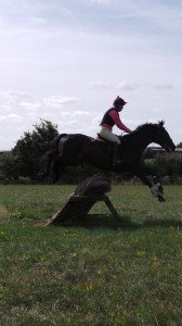 In the schooling field, flying the brush!